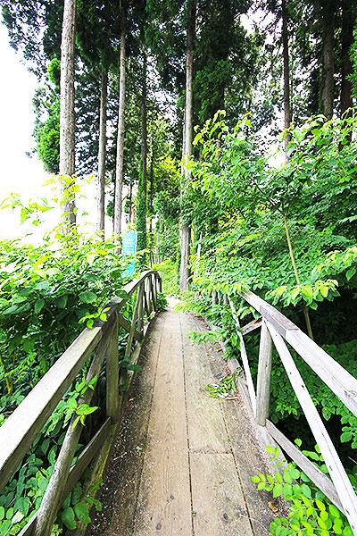 雲結い(くもゆい)までの凸凹道や草が生い茂った橋